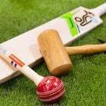 knock-in-cricket-bat-2