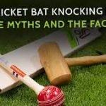 knock-in-cricket-bat-4