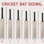 cricket-bat-size-6