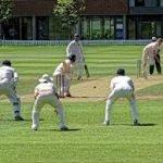 cricket-fielding-3